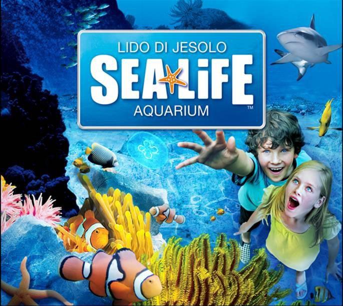 http://www.hotelvenezuela.it/wp-content/uploads/2016/12/sea-life-jesolo.jpg
